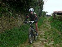 景观Sastarrain在地区骑自行车的人树