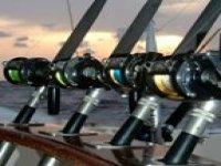 去钓鱼与我们