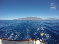 Pesca desde barco en La Palma