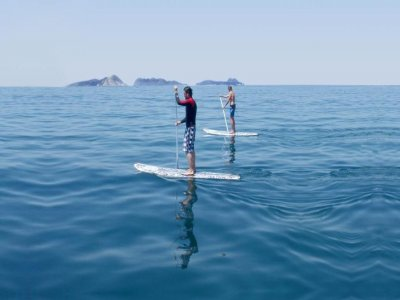 Stand Up Paddle Surf Course in Playa de Patos 1day