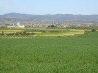 La zona Media de Navarra