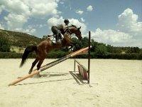 Fence jump