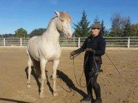Junto al caballo blanco