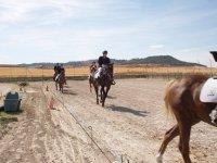Vueltas a la pista a caballo