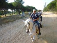 De ruta con los caballos por la arena