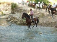 Metiendo al caballo en el rio