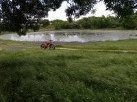 Fat bike en la laguna