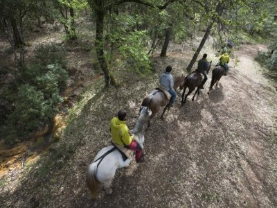 Horse Riding in Cazorla: 1 Hour