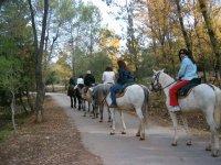 Percorso di equitazione a Cazorla 1 ora