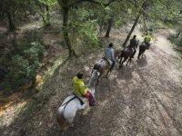Ruta a caballo en Cazorla 1 hora