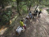 Excursión a caballo de 2 horas en Cazorla