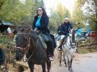 Tour a cavallo di 2 ore a Cazorla