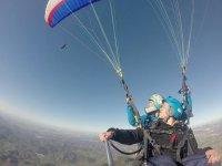 查看来自马拉加滑翔伞的猛禽