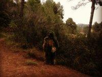 Mimetizado con el bosque
