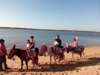Family trip by donkey in Huelva