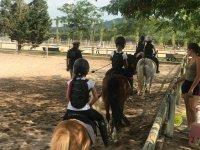 Lezioni di equitazione al Casal