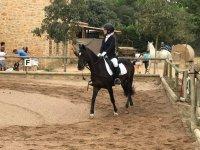 Dirigiendo al caballo en la pista