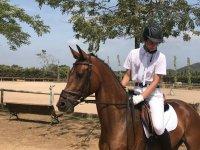 Jinete entrenando a caballo