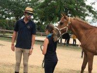 Llevando al caballo de las riendas