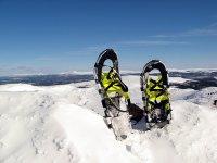 舒适的用具,可以在雪地上行走