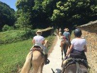 A caballo por frondosos paisajes
