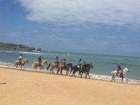 Excursion al borde de la playa