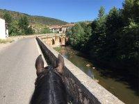 Sobre el puente de Covarrubias a caballo