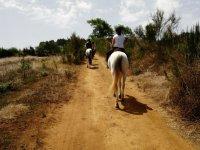 Montando a caballo en la isla de Tenerife