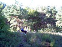 Tirolina in the nature
