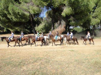 OFFERTA equitazione in ambiente Doñana. 2 ore