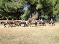 Special offer: 2h horse ride in Doñana