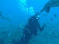 Con las especies marinas