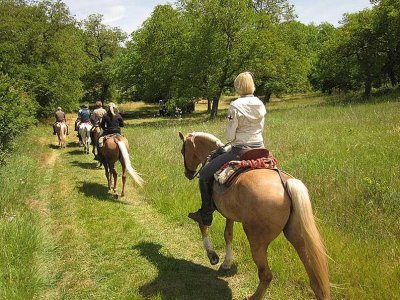 Horse riding 1 week in Sierra de la Demanda