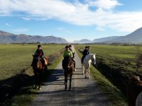 1 hour horseback route + gift card