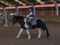 Passeggiate a cavallo su pista indoor