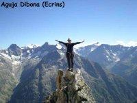阿尔卑斯山的针头dibona
