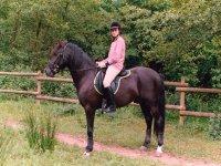 Non dimenticare di venire dal nostro equitazione
