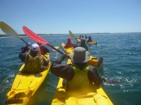 Kayak excursion in the sea