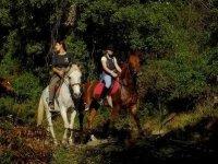 Pasea a lomos de un caballo