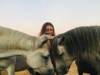 Pair of horses pampering