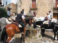 Los caballos tienen que refrescarse