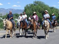 Horse riding in a group