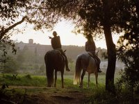 Horse riding in a couple