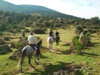 Camino del Villar