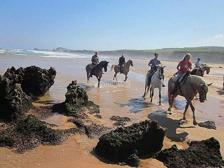 Un increíble paseo por la playa, a caballo