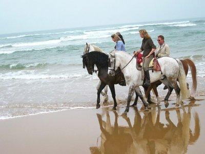 Ruta a caballo 7 días en Santander con alojamiento
