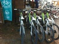 Bicicletas en alquiler