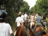 de marcha con los caballos