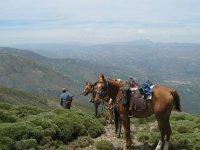 unas vistas inmejorables con los caballos