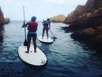 离开洞穴桨冲浪标志Naturescapes布拉瓦